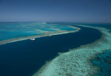 Australia's Great Barrier Reef a living wonder