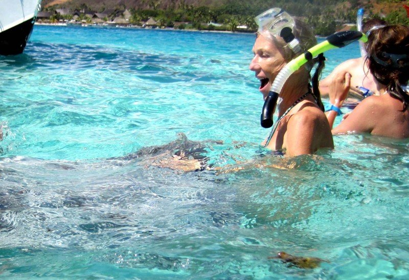 Stingray in Antigua