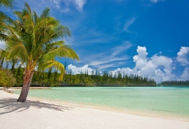 New Caledonia Isle of Pines