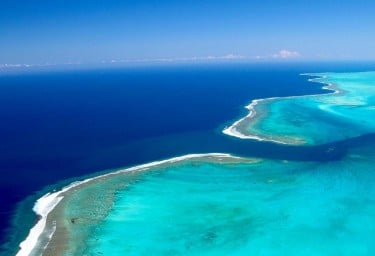 New Caledonia Reef